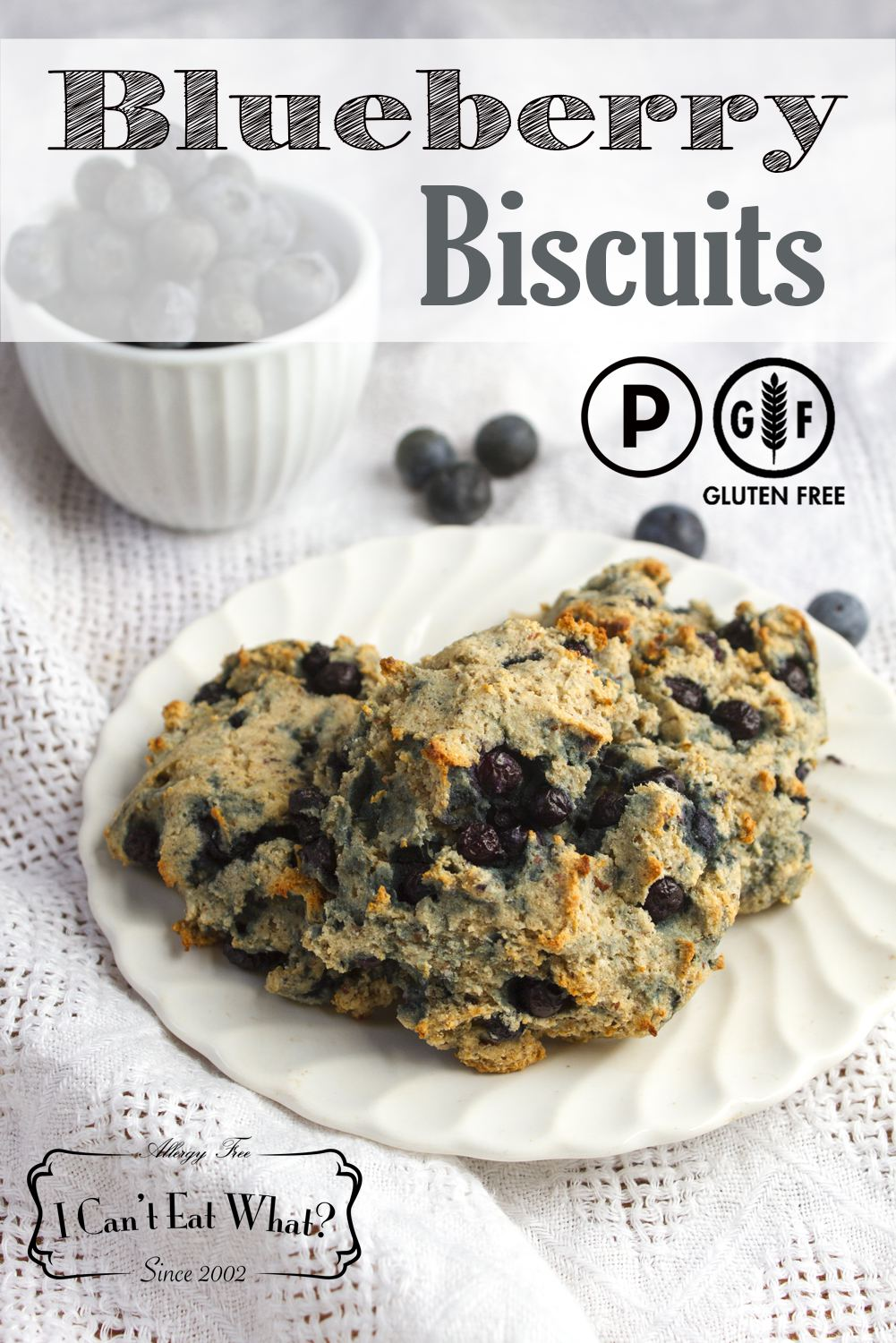 Grain Free Blueberry Biscuits