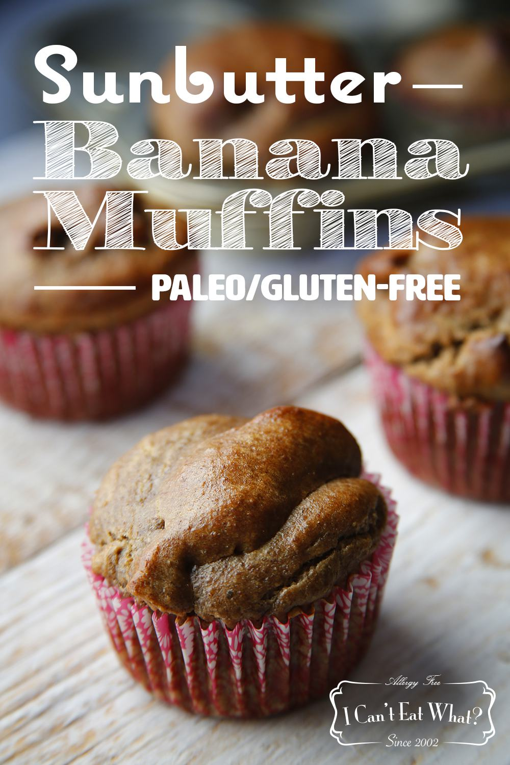Paleo/Vegan Sunflower Banana Muffins